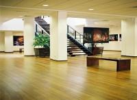 Sàn gỗ sồi Nga - N900